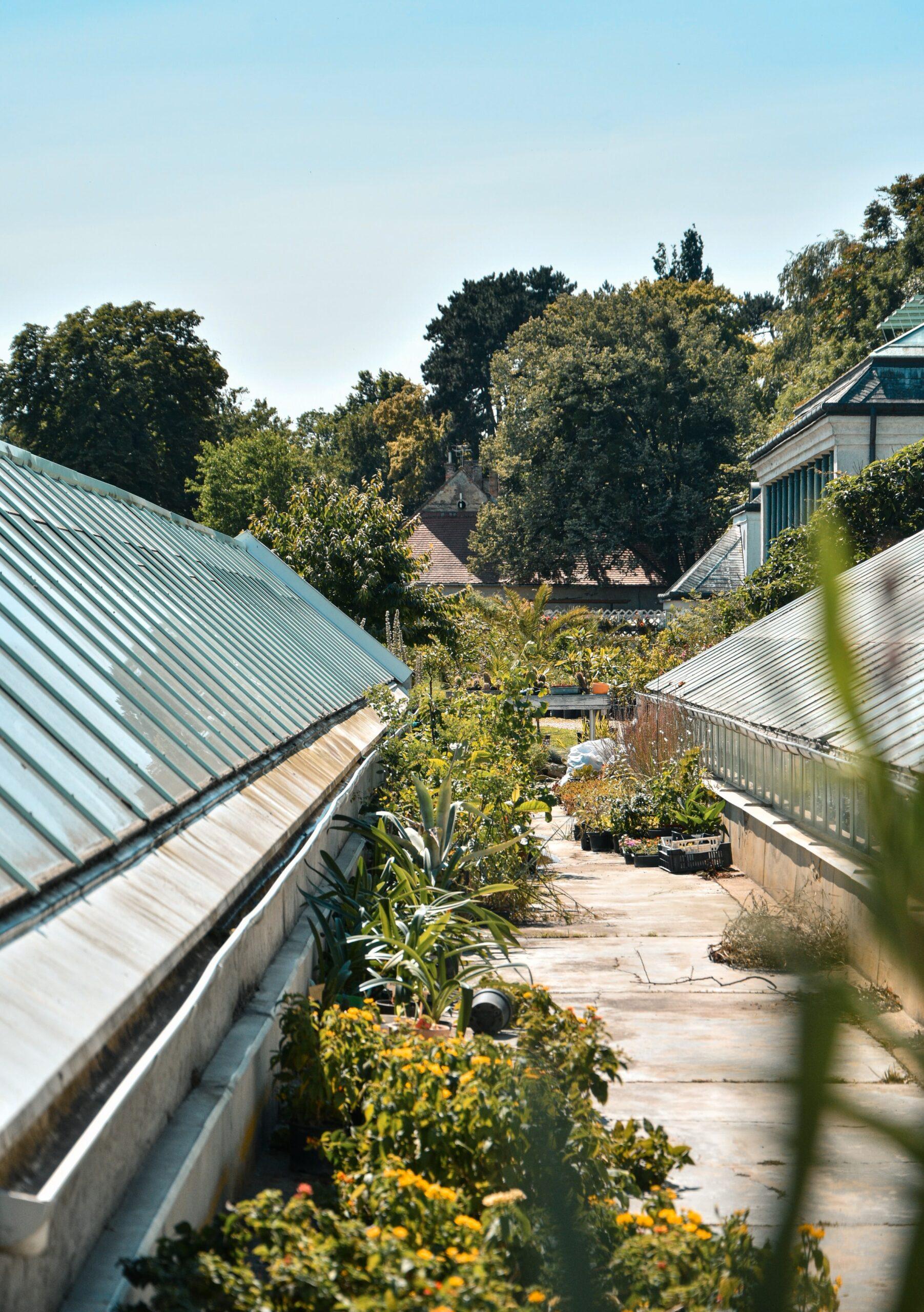 Image description. botanical garden