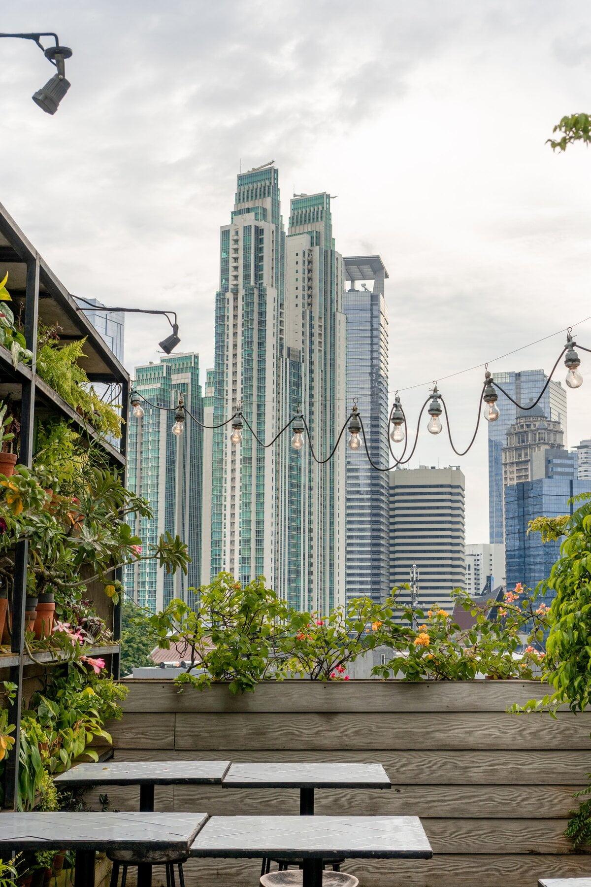 Image description. green urban space versus grey urban space