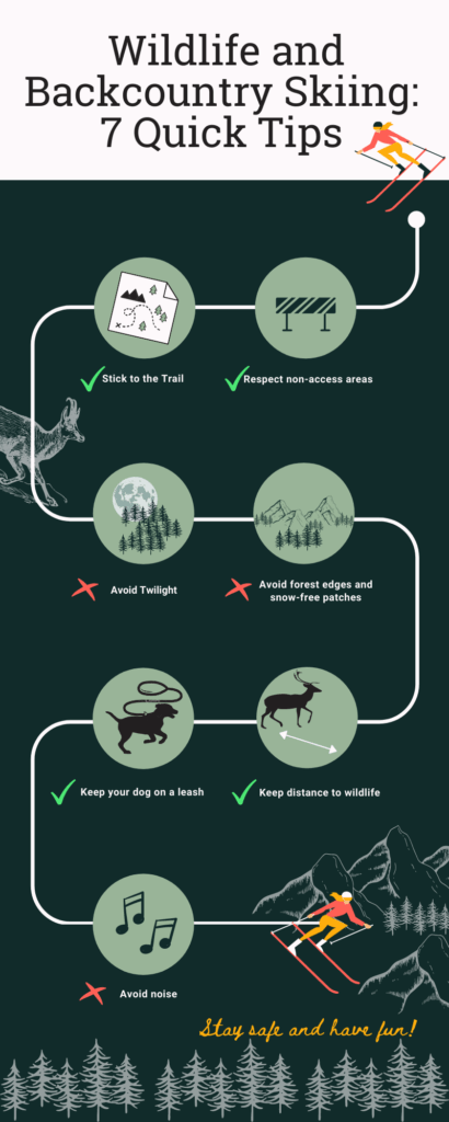 image description. infographic wildlife and backcountry skiing