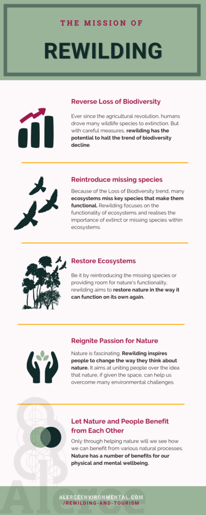 Rewilding infographic outlining the main missions of rewilding and what benefits it brings.
