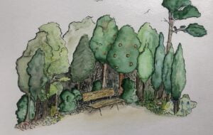 Tiny forest with local plants and trees painted in water colour.